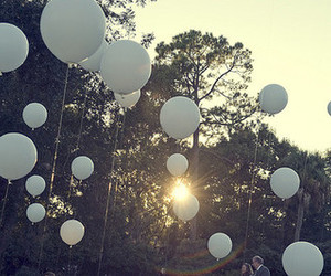 balloons, sun, and trees image