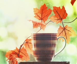 leaves, autumn, and cup image