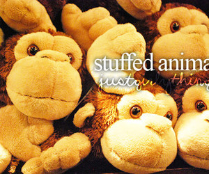 stuffed animals and toys image