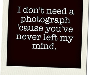 love, photograph, and quote image