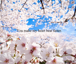 flowers, heart, and quote image