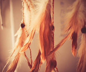 feather, Dream, and photography image