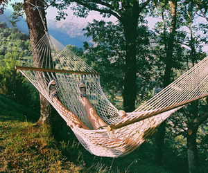 nature, summer, and hammock image