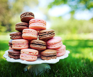 macarons, pink, and sweet image