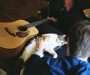 boy, cat, and guitar image