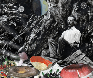 anatomy, Collage, and colour image