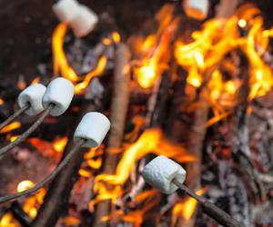 smores and summer image