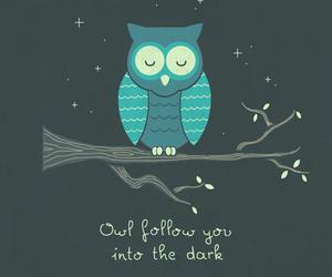 owl, follow, and night image