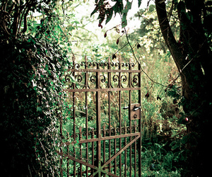 garden, gate, and green image
