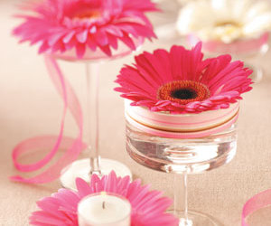 candle, daisy, and gerbera image