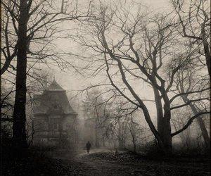 dark, fog, and house image