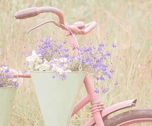 basket, pink, and bike image