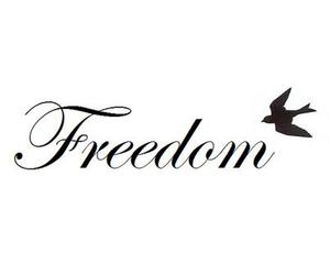 freedom, quote, and bird image