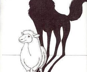 sheep and wolf image