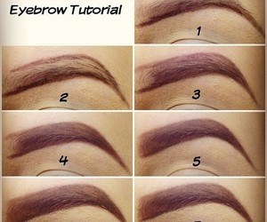 eyebrow, eyebrows, and makeup image