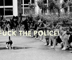 black and white, fuck the police, and photography image