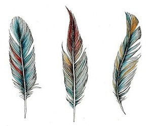 feather, art, and draw image