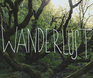 quote, text, and wanderlust image
