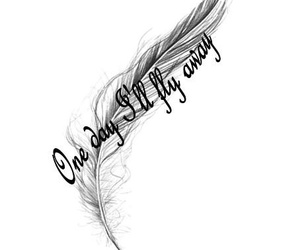 black, feather, and white image