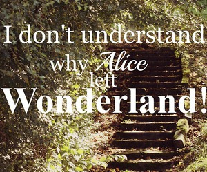 wonderland, alice, and Dream image