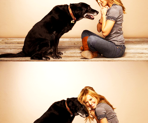dog, kristen bell, and cute image