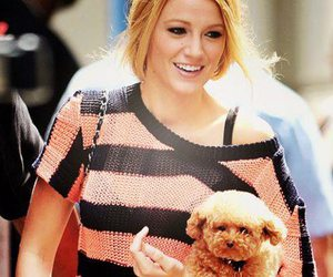 blake lively, dog, and puppy image
