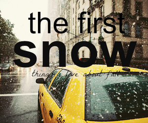 snow, new york, and winter image