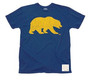 bear, berkeley, and blue image