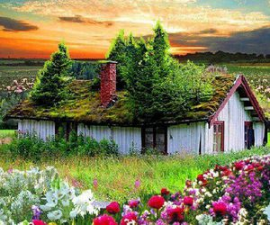 beautiful, house, and nature image