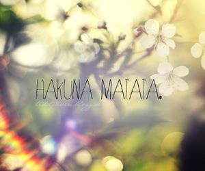 hakuna matata, flowers, and hakuna image