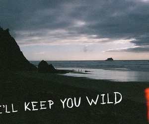 wild, beach, and quote image