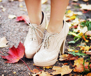 autumn and shoes image