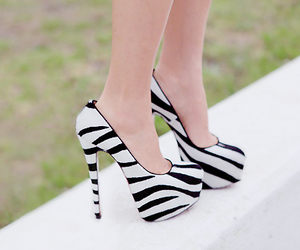 shoes, heels, and zebra image