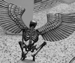 angel, skeletons, and death image