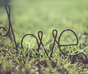 love, grass, and green image