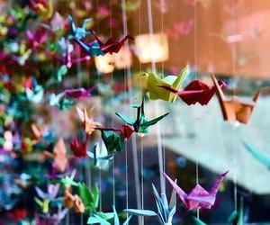 origami, crane, and bird image