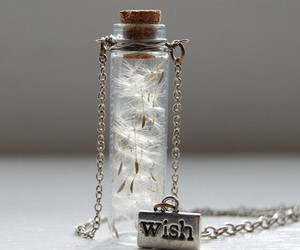 wish and Dream image