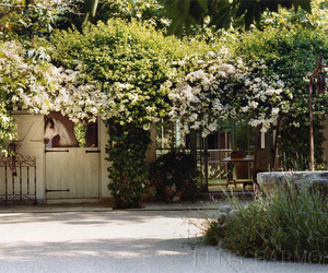 beautiful, garden, and cosy image