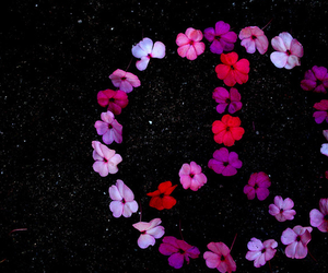 peace, flowers, and photography image