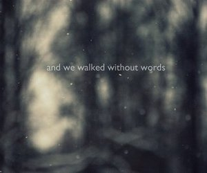 text, words, and walk image