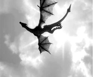 amazing, dragon, and fly image
