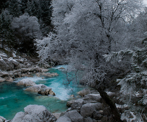 frost, pretty, and water image