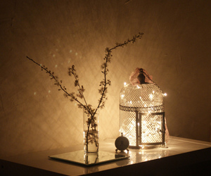 light and flowers image