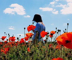 alone, flowers, and natural image
