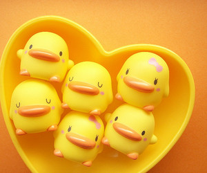 duck, cute, and yellow image