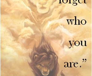 quotes, disney, and lion king image