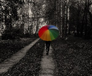 bright, nice, and umbrella image