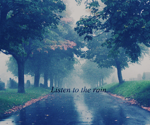 rain, listen, and tree image
