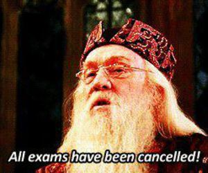 harry potter and exams image