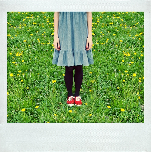 dress, field, and flowers image